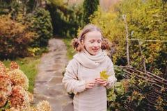 在10月下旬或11月哄骗走在庭院里和使用与枫叶的女孩 探索自然的孩子 免版税库存图片