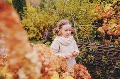 在10月下旬或11月哄骗走在庭院里和使用与枫叶的女孩 探索自然的孩子 免版税库存照片