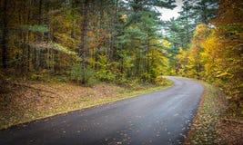 在10月下旬颜色的县路 免版税库存照片