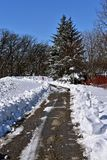 在3月风暴以后的雪场面 库存图片