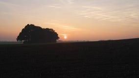 在10月高涨期间的日落在Ootmarsum (荷兰)附近 免版税库存照片