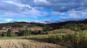 在晴朗的多云天空的麦地 库存图片