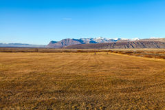 在晴朗的天气的冰岛风景 免版税库存照片