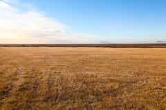 在晴朗的天气的冰岛风景 库存图片