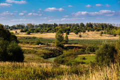 在晴朗的天气的领域在秋天 免版税图库摄影