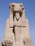 在晴朗的气氛的古老狮身人面象 库存照片