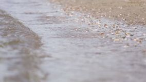 在晴朗的海滩的小卵石 影视素材