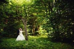 在晴朗的绿色森林的婚礼夫妇 免版税库存图片
