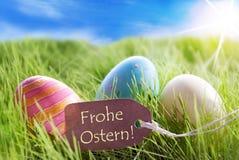 在晴朗的绿草的三个五颜六色的复活节彩蛋与与德语Frohe Ostern的标签意味复活节快乐 免版税库存照片