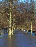 在洪水期间的一条被淹没的小径 免版税库存照片