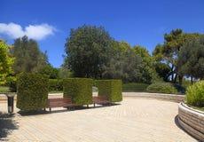 在黄杨木潜叶虫之间的庭院长凳 图库摄影