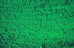 在绿松石木背景的水下落 库存照片