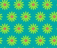 在绿松石背景无缝的传染媒介样式的绿色雏菊 免版税图库摄影
