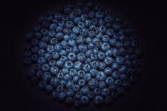 在黑板岩的湿蓝莓 免版税库存图片