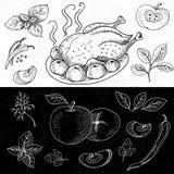 在黑板食物白垩画的套,香料 免版税库存照片