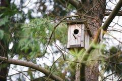 在结构树的鸟舍 库存图片
