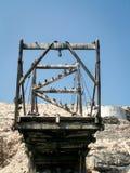在结构Ballestas画象的沿海鸟 免版税库存图片