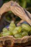 在水果钵的葡萄 免版税库存图片