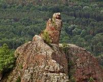 在贝洛格拉奇克镇附近的岩石 建造者 库存照片