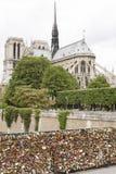 在巴黎桥梁的爱锁 免版税库存照片