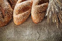 在黑森州的背景的有壳的面包棒黑麦耳朵 免版税图库摄影