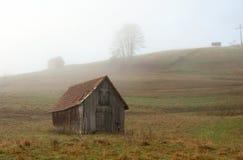 在黑森林的有雾的早晨 免版税库存图片
