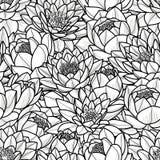 在黑概述的任意莲花在白色背景 无缝的样式传染媒介例证 向量例证