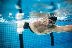 在水池的专业男性运动员游泳 免版税库存图片