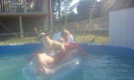 在水池的乐趣天在一热的天 免版税库存照片
