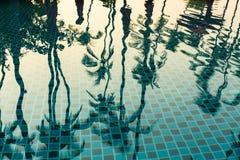 在水池的热带棕榈树反射 聚会所 库存图片