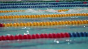 在水池蛙泳的运动员男性游泳者游泳 股票视频