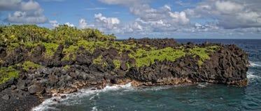 在黑沙子海滩的毛伊夏威夷热带风景 库存照片