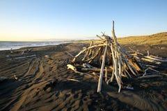 在黑沙子海滩的漂流木头小屋 免版税库存图片