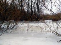 在冻河的树 免版税库存照片