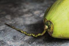 在水泥地板上的新鲜的绿色椰子 免版税库存图片