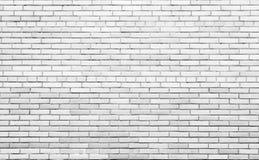 在水泥纹理的砖 免版税库存照片