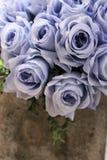 在水泥罐的蓝色玫瑰 葡萄酒概念 免版税库存图片