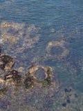 在水浪潮水池下 免版税库存照片