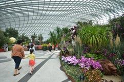 在滨海湾公园的花圆顶在新加坡 免版税库存图片