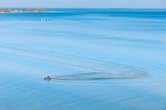 在水海的喷气机滑雪 免版税库存照片