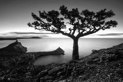 在黑海的日出 单色颜色 库存照片