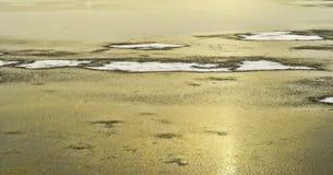 在冻海洋的白色雪补丁 免版税库存照片