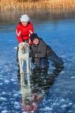 在冻湖的孩子滑冰与他们的狗的 库存照片