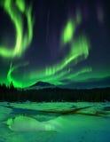 在冻湖的极光borealis 免版税库存照片