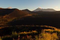 在1975年火山和死的木头在黎明-灰灾难发行的后果在火山的爆发时 免版税图库摄影