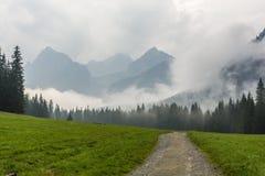 在仍然下雨的山的上流 免版税库存照片