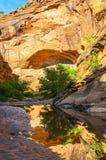 在水猎人峡谷供徒步旅行的小道默阿布犹他的反射 免版税库存照片