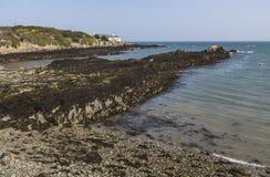 在洋玉兰的陆岬在Anglesey,威尔士,英国 库存照片