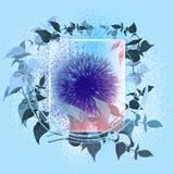 在玻璃下的花与蓝色backgraund 免版税库存照片