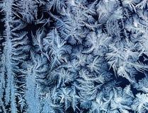 在玻璃冬天胜利的美好的蓝色华丽欢乐冷淡的样式 图库摄影